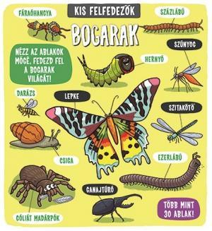 Kis felfedezők – Bogarak