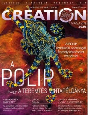 Creation Magazin 2020